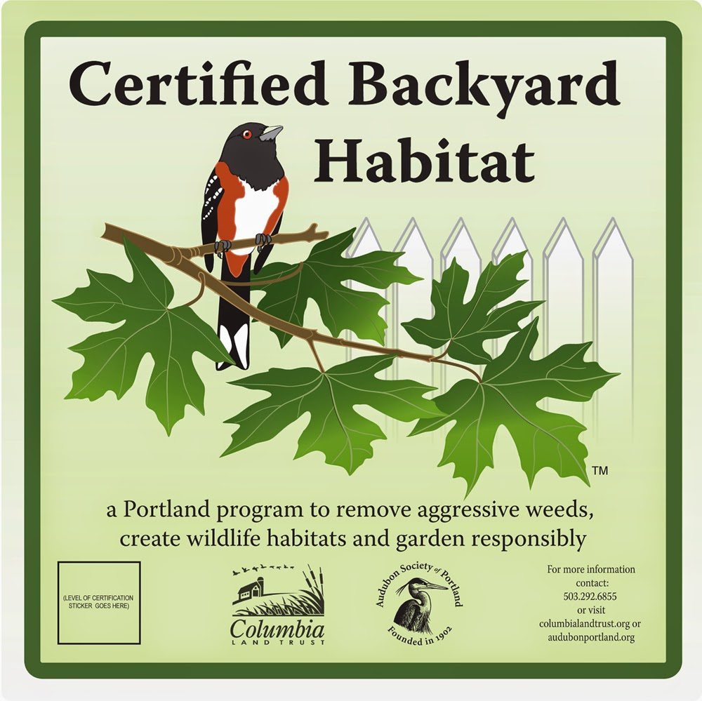 Exceptionnel Backyard Habitat