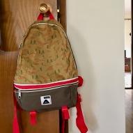Backpack/Fanny Pack